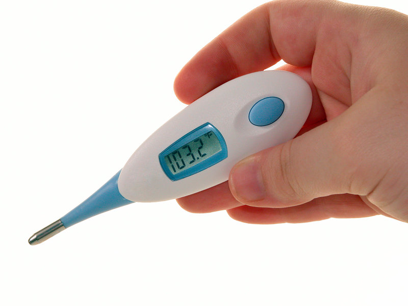 Fever patrol thermometer